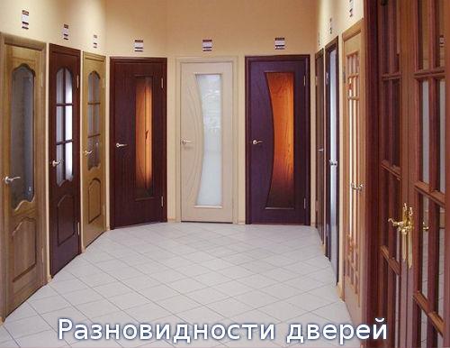 Разновидности дверей