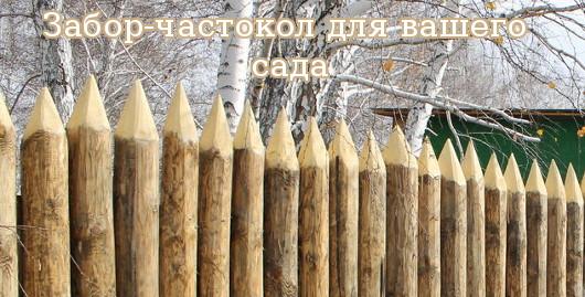 Забор-частокол для вашего сада